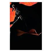 Купить хардпостеры (на твёрдой основе) V for Vendetta