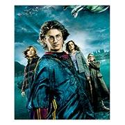 Купить хардпостеры (на твёрдой основе) Harry Potter