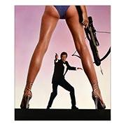 Купить хардпостеры (на твёрдой основе) James Bond: For Your Eyes Only