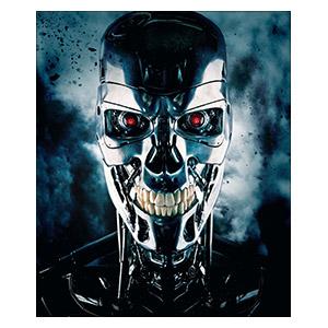 Хардпостер (на твёрдой основе) Terminator. Размер: 25 х 30 см