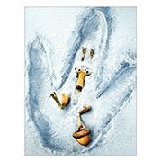 Купить хардпостеры (на твёрдой основе) Ice Age
