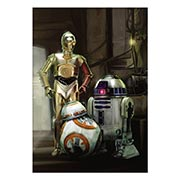 Купить хардпостеры (на твёрдой основе) Star Wars