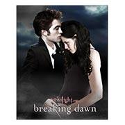 Купить хардпостеры (на твёрдой основе) Twilight