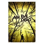 Купить хардпостеры (на твёрдой основе) Ash vs. Evil Dead