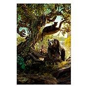 Купить хардпостеры (на твёрдой основе) Jungle Book