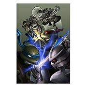 Хардпостер (на твёрдой основе) Ninja Turtles. Размер: 40 х 60 см