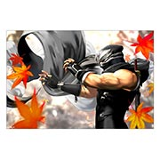 Хардпостер (на твёрдой основе) Ninja Gaiden. Размер: 60 х 40 см