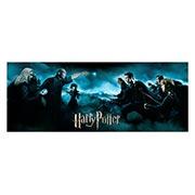 Купить подарочная обёртка для постеров Harry Potter