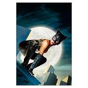 Купить стикеры Catwoman