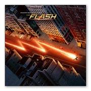 Купить магниты с металлическим отливом Flash