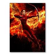 Купить магниты с металлическим отливом Hunger Games