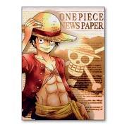 Купить магниты с металлическим отливом One Piece