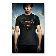 Магнит с металлическим отливом Smallville