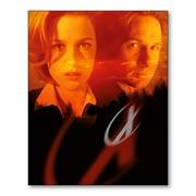 Купить магниты с металлическим отливом X-Files