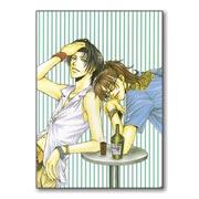 Купить универсальные наклейки Taishi Zao Art