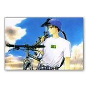 Набор стикеров Minako Narita art