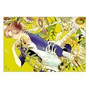 Купить прямоугольные интерьерные наклейки Fate/Stay Night