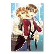 Купить прямоугольные интерьерные наклейки Itsuki Kaname Art