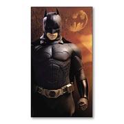 Гибкий магнит (маленький) Batman