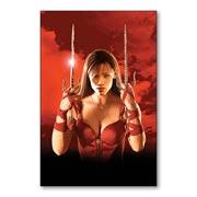 Гибкий магнит (маленький) Elektra