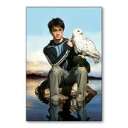 Купить гибкие магниты (маленькие) Harry Potter
