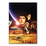 Купить гибкие магниты (большие) Dune