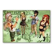 Купить гибкие магниты (большие) Fairy Tail