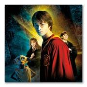 Купить гибкие магниты (большие) Harry Potter
