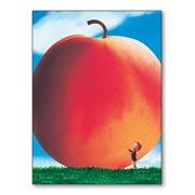 Гибкий магнит (большой) James And The Giant Peach