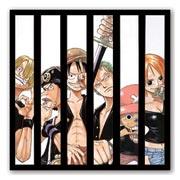 Купить гибкие магниты (большие) One Piece