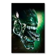 Магнитная картина Alien