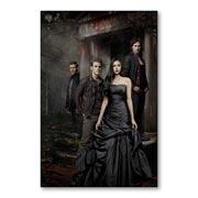 Купить магнитные картины Vampire Dairies