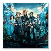 Купить магнитные картины Pirates of the Caribbean