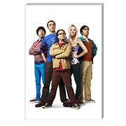 Почтовые открытки Big Bang Theory