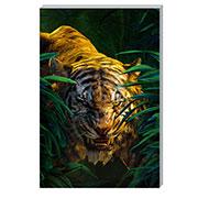Почтовые открытки Jungle Book