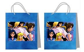 Пакет практичной серии (большой) Sailor Moon