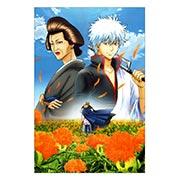 Купить тематические открытки. серия floriant Gintama