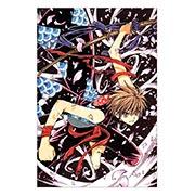 Купить тематические открытки. серия picante Tsubasa Reservoir Chronicle