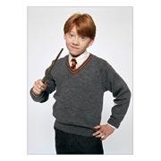 Купить школьные блокноты Harry Potter