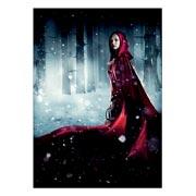 Купить школьные блокноты Red Riding Hood