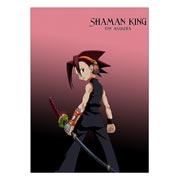 Купить школьные блокноты Shaman King