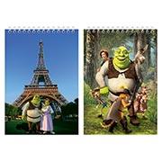 Купить большие скетчбуки Shrek
