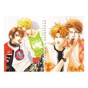 Купить лекционные тетради Shuiko Kano Art
