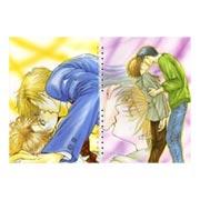 Купить лекционные тетради Taishi Zao Art