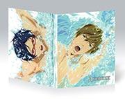 Купить школьные дневники Free!