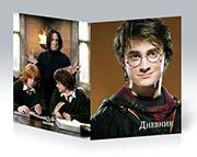 Купить школьные дневники Harry Potter