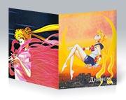 Купить школьные дневники Sailor Moon