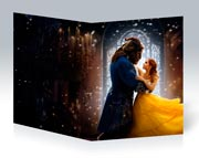 Купить тонкие школьные тетради Beauty and the Beast