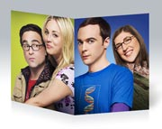 Купить тонкие школьные тетради Big Bang Theory