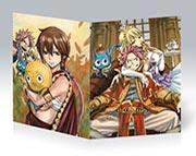 Купить тонкие школьные тетради Fairy Tail